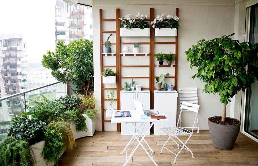 Tận dụng không gian trên tường để bố trí cây xanh